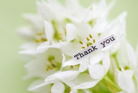 [感谢领导的话语 暖心]感谢领导的话语简单(共10篇)